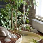 Декоративный водоем из искусственного камня
